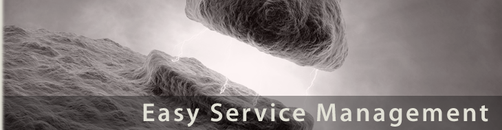 Easy Service Management